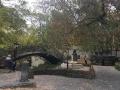 03 Bridge